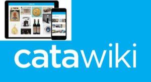 catawiki guadagnare online